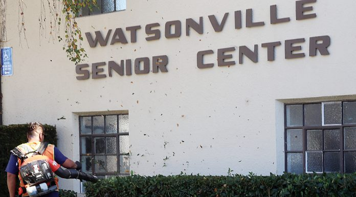 watsonville senior center