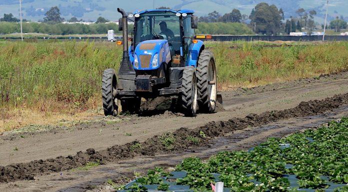 Watsonville farmworkers