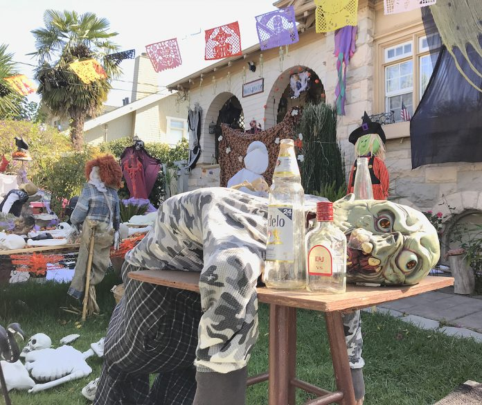 halloween covid-19 Santa Cruz county