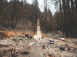 Santa Cruz mountains mudslide debris
