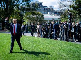 President trump covid-19