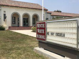 mintie white pvusd school