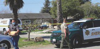 delaney avenue watsonville homicide