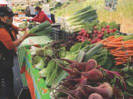 Community Health Trust of Pajaro Valley farmers market watsonville