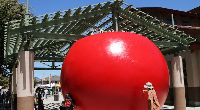 redball project