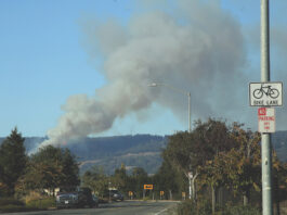 Estrada Fire